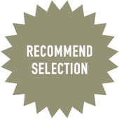 RECOMMENDSELECTION